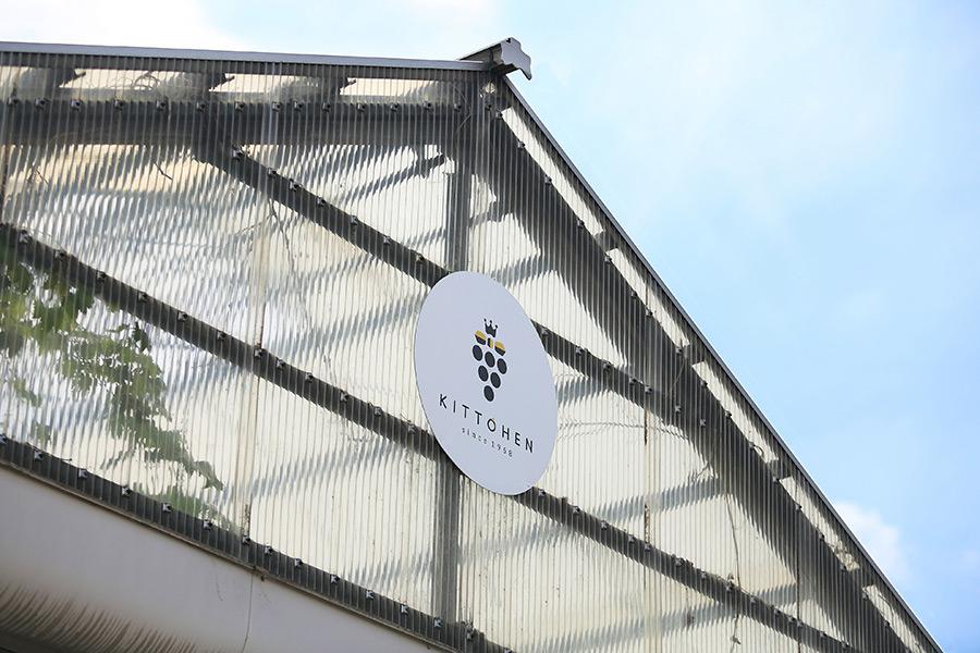 愛知県大府市 葡萄園のロゴマーク